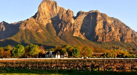 Boschendal Wine Farm Franschhoek Landscape