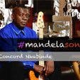 Mandela Song Lives On - 1