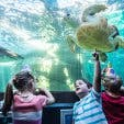 Kids Party Venue Two Oceans Aquarium