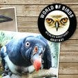World of Birds logo
