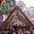 Organik Trance Party