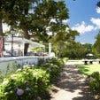 The Rose Bar Garden