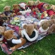 Cape Teddy Bear Fair at Buitenverwachting