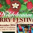 Wildebraam Berry Festival 1