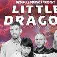 Little Dragon Concert in Cape Town 1