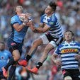 Western Province Rugby 7