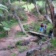 VoiceMap The Elfin Trail