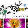 Barrydale in Bloom - 1