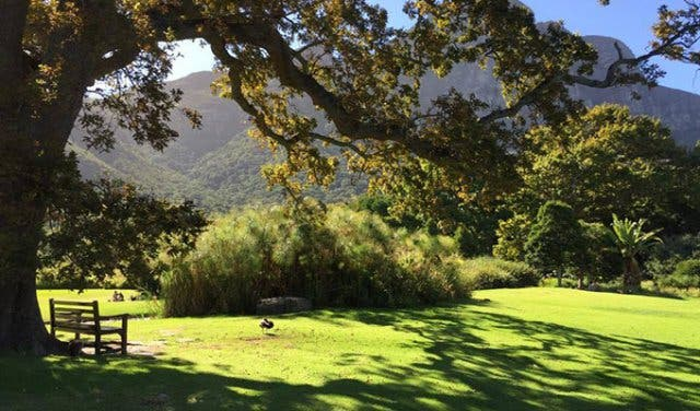 best date in cape town free picnic spots around me