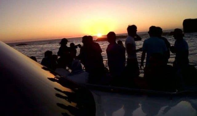 New Experiences 18 Day Tours For Exploring The Cape