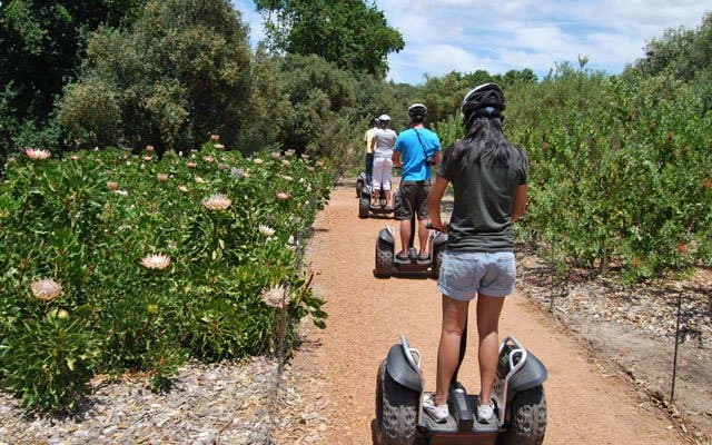segway tours at spier in stellenbosch