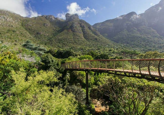 Things You Have To Do In Cape Town Before You Die