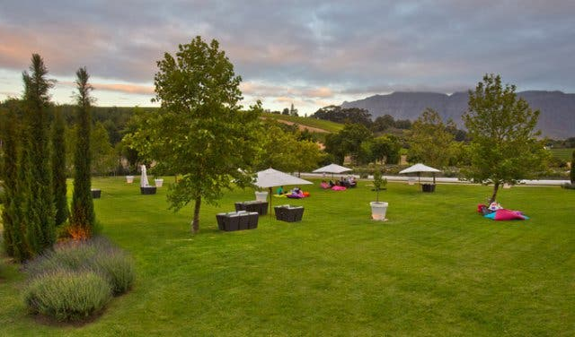 Peter Falke Wine Farm Lawn