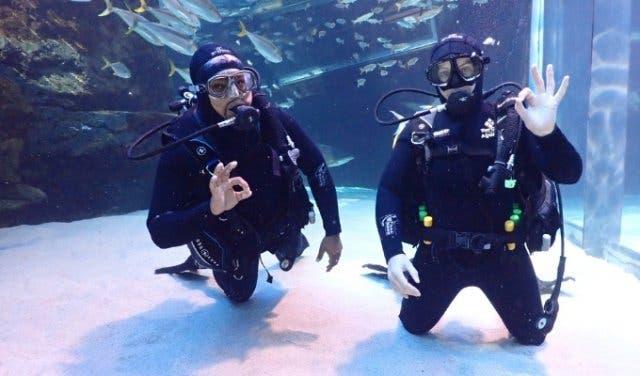 Two_Oceans_Aquarium_Dive_School
