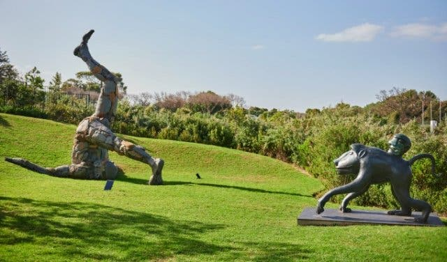 Norval_Foundation_Sculpture_Garden