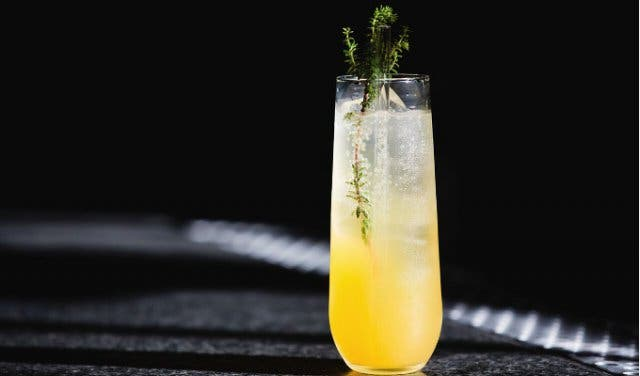 outrage of modesty cocktail bar in cape town