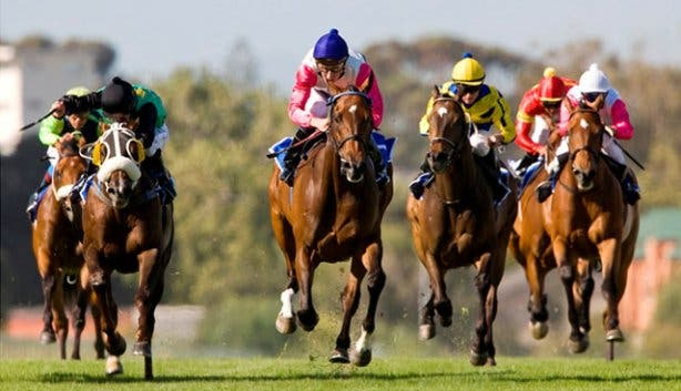 kenilworth horse racing results